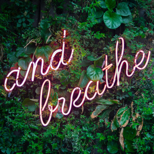 Vores åndedræt